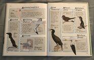 Macmillan Animal Encyclopedia for Children (40)