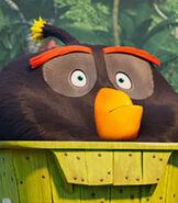 Bomb-the-angry-birds-movie-2-95.6