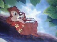 Dale in Disney