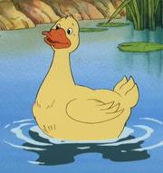 Little Bear Duck