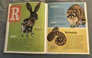 The Dictionary of Ordinary Extraordinary Animals (43)