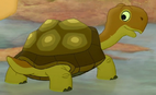 Turtle TLG