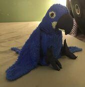 Babe the Hyacinth Macaw
