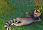 King Julien the Ring-Tailed Lemur