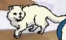 MSB Arctic Fox