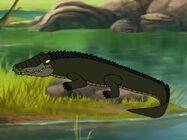 Rileys Adventures Nile Crocodile