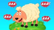 The Sheep Goes Baa
