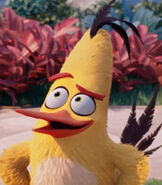 Chuck-the-angry-birds-movie-6.2