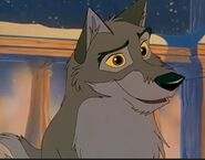 Handsome Balto