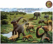 Smilodons Probally Ate Elephants