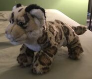 Jeremy the Jaguar