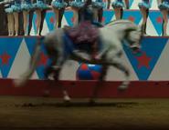 Dumbo 2019 Horse