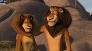 Madagascar2-disneyscreencaps.com-2934