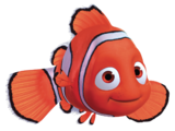 List of Species from Finding Nemo