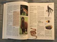 The Kingfisher Illustrated Encyclopedia of Animals (3)