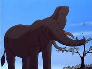 318599 1256640898062 full Lion King 2 Elephant