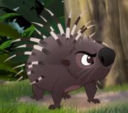 Asian Porcupine TLG
