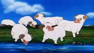 Lambert-the-sheepish-lion-sheeps