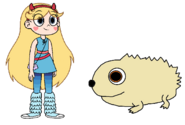 Star meets Desert Hedgehog