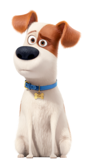 Max the secret life of pets