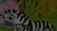 Mommy Zebra