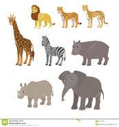 Rhinoceros Zebra Giraffe Lion Cheetah Leopard Elephant Hippos