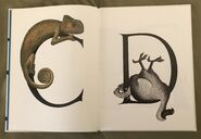 Animal Alphabet (Bert Kitchen) (2)
