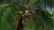 Madagascar-disneyscreencaps.com-7649