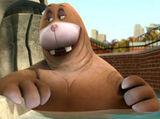 Rhonda the Walrus