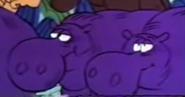 GOTJ 1967 Hippos