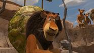 Madagascar2-disneyscreencaps.com-4558