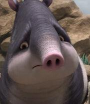 Rosie the Tapir