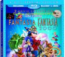 Fantasia (Nikkdisneylover8390's Style)