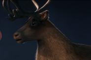 Polar Express Reindeer
