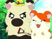Boss and Hamtaro