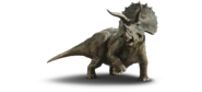 JP5 Triceratops