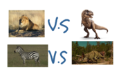 African Lion and Plains Zebra VS. Tyrannosaurus and Triceratops