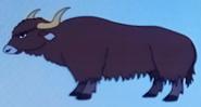 Batw-animal encyclopedia-wild-yak