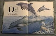 The A to Z Book of Wild Animals (4)