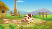 Appu Cow