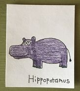 Hippopotamus Begins With H
