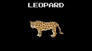 KPS Leopard