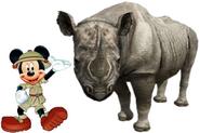 Mickey Meets Black Rhinoceros