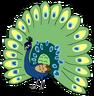 Paula the Peafowl