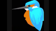 Safari Island Kingfisher