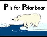 P for Polar Bear
