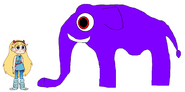 Star meets Asian Elephant