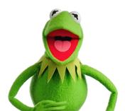 Kermit-2011