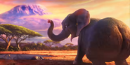Lil Dicky Elephant