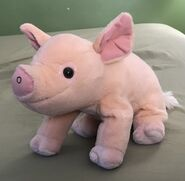 Napoleon the Pig